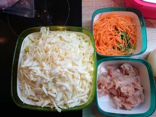 Weißkohl, Karotten, Frühlingszwiebeln und Hähnchen