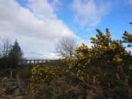 Nairn Viadukt