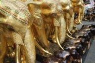 Heilige Elefanten